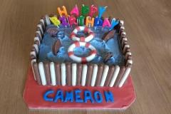 Shark Cake £40